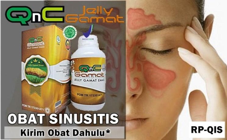 Obat Sinusitis Herbal QnC Jelly Gamat