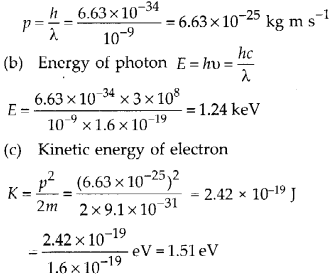 NCERT Solutions for Class 12 Physics Chapter 11 Dual Nature of Radiation and Matter 28