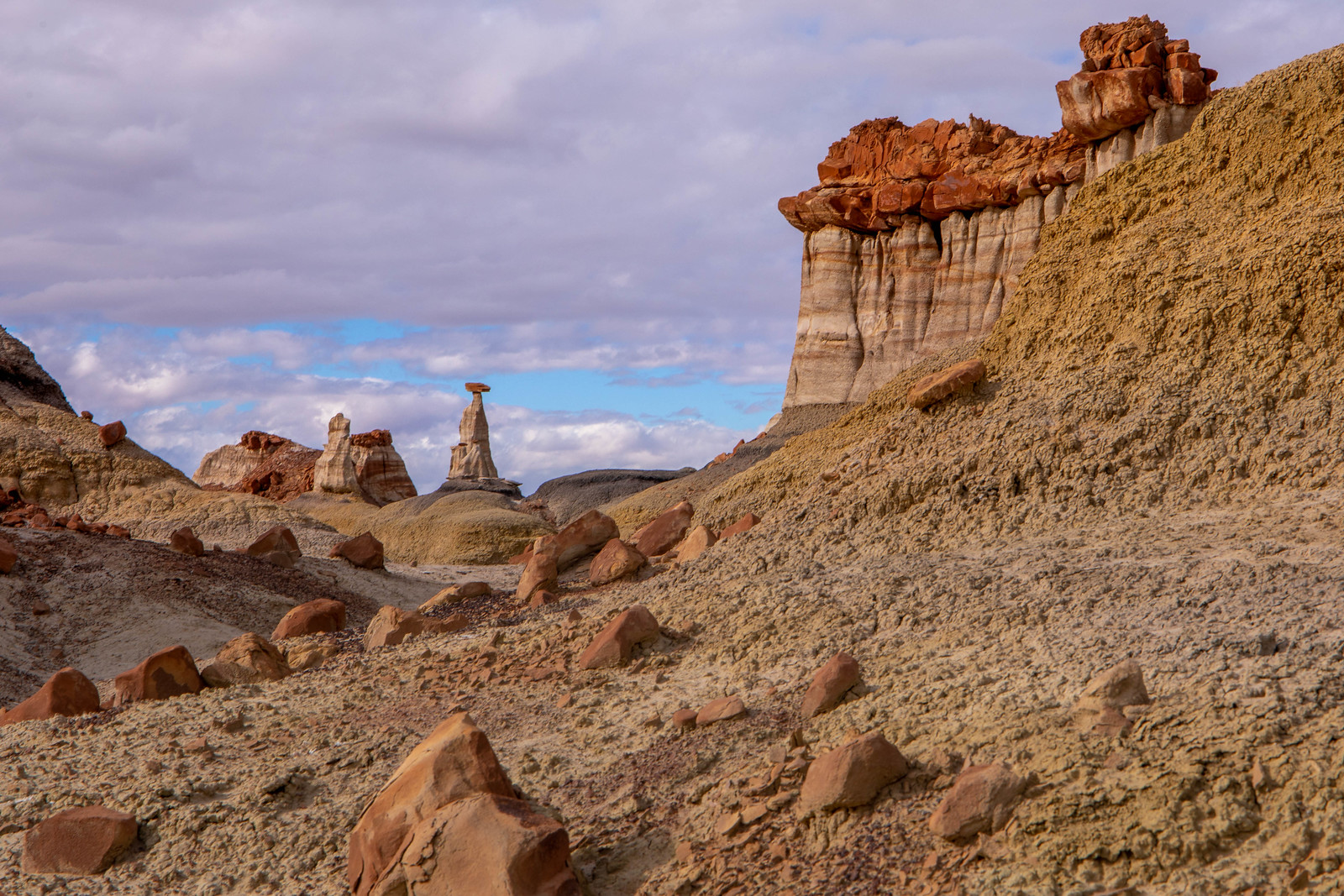 12.25. Bisti Badlands, NM