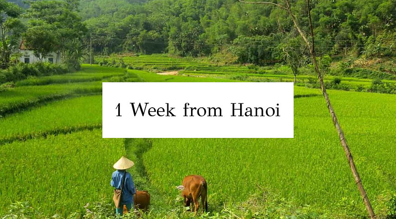 1-week-from-Hanoi