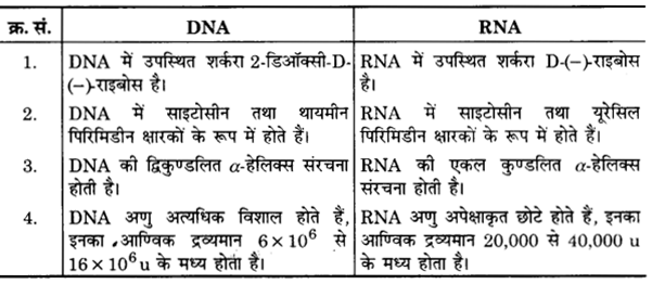 UP Board Solutions for Class 12 Chemistry Chapter 14 Biomolecules 14