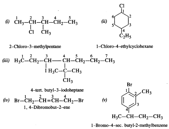 NCERT Solutions for Class 12 Chemistry Chapter 11 Alcohols, Phenols and Ehers tq 1