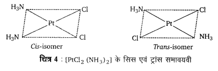 UP Board Solutions for Class 12 Chemistry Chapter 9 Coordination Compounds 4Q.3.1