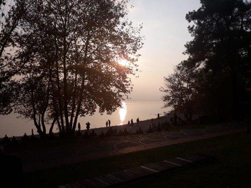sakarya gölü