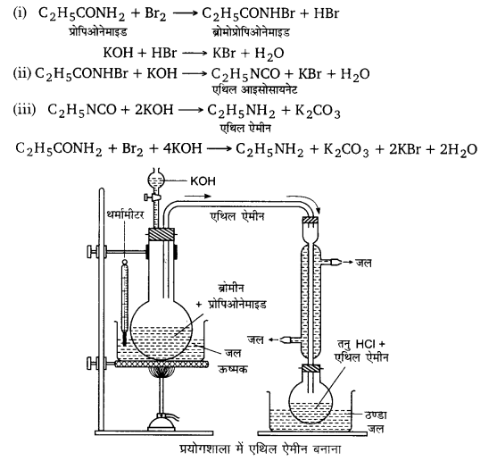 UP Board Solutions for Class 12 Chemistry Chapter 13 Amines 82