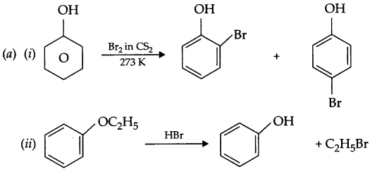 CBSE Sample Papers for Class 12 Chemistry Paper 7 Q.24.4