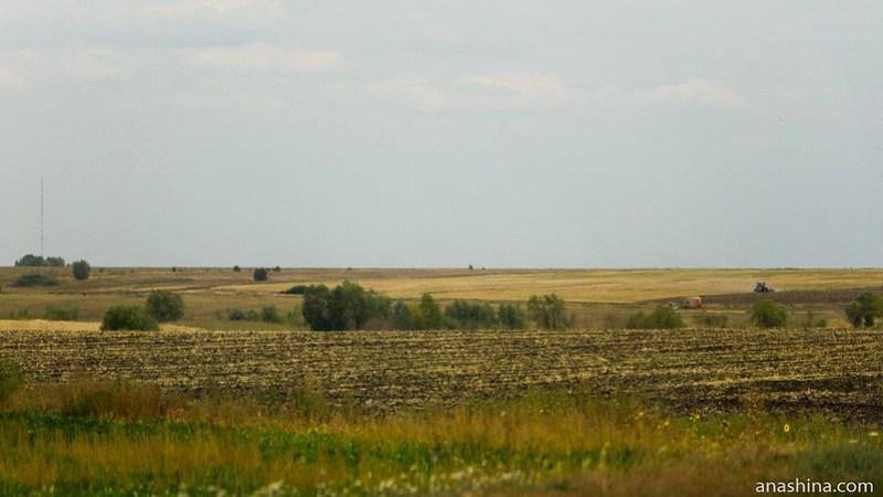 Саратовская область, поля