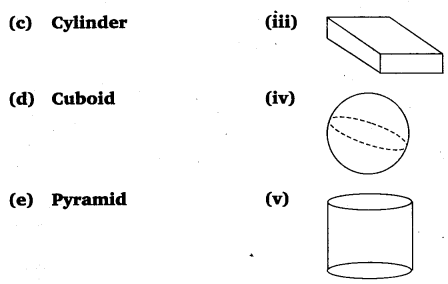 NCERT Solutions for Class 6 Maths Chapter 5 Understanding Elementary Shapes 39