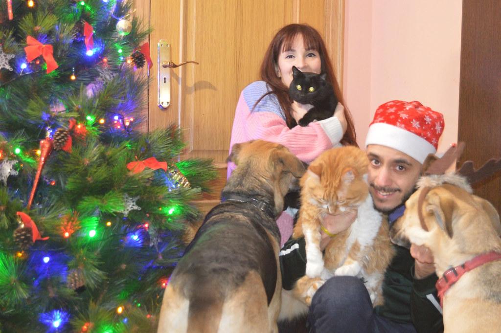 Flequillo-new-outfit-luz-tiene-un-blog-Navidad-2018