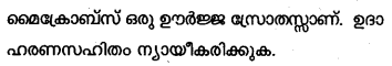 Plus Two Zoology Model Question Papers Paper 5.15