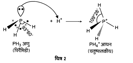UP Board Solutions for Class 12 Chemistry Chapter 7 The p Block Elements Q.7