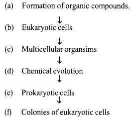 Kerala SSLC Biology Model Question Papers with Answers Paper