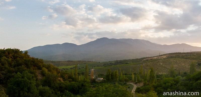Виноградники, Крым