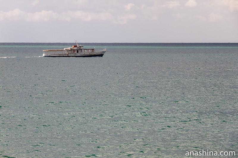 Теплоход, Черное море, Крым