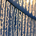 Sunlight on Winter Fence