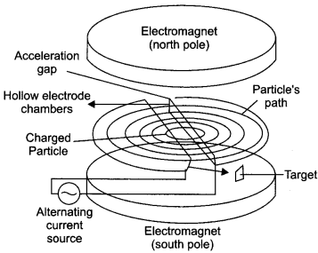 CBSE Sample Papers for Class 12 Physics Paper 6 80