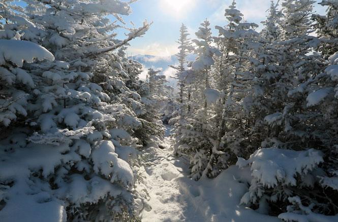 Mt. Starr King Winter Hike