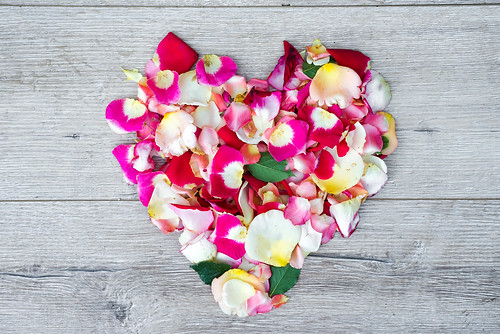 heart made of rose flowers on wooden background for Valentines day. Flat lay,