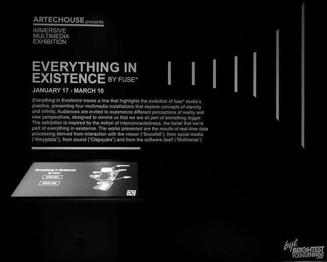 Everything in Existence