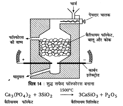 UP Board Solutions for Class 12 Chemistry Chapter 7 The p Block Elements 5Q.5.1