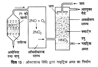 UP Board Solutions for Class 12 Chemistry Chapter 7 The p Block Elements 5Q.4.1
