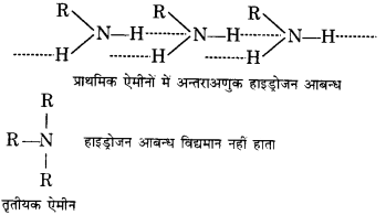 UP Board Solutions for Class 12 Chemistry Chapter 13 Amines 57