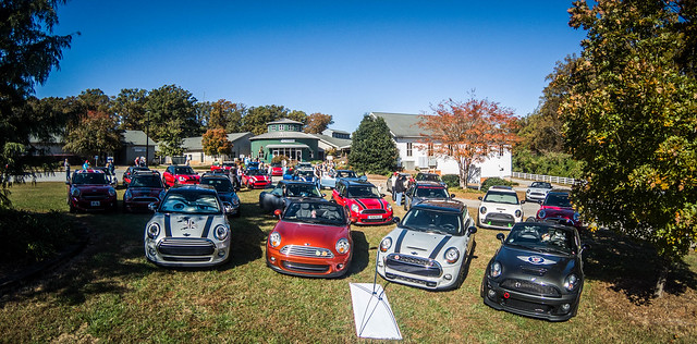 Upstate Minis Bulldog Fun Run 2018-001