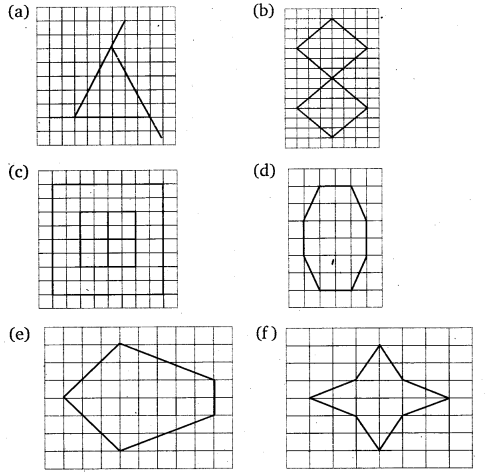 NCERT Solutions for Class 6 Maths Chapter 13 Symmetry 22