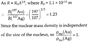 NCERT Solutions for Class 12 Physics Chapter 13 Nucle 17