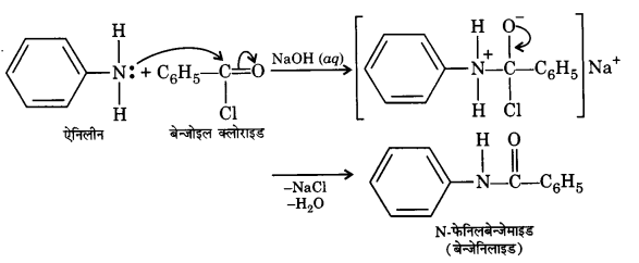 UP Board Solutions for Class 12 Chemistry Chapter 13 Amines 7