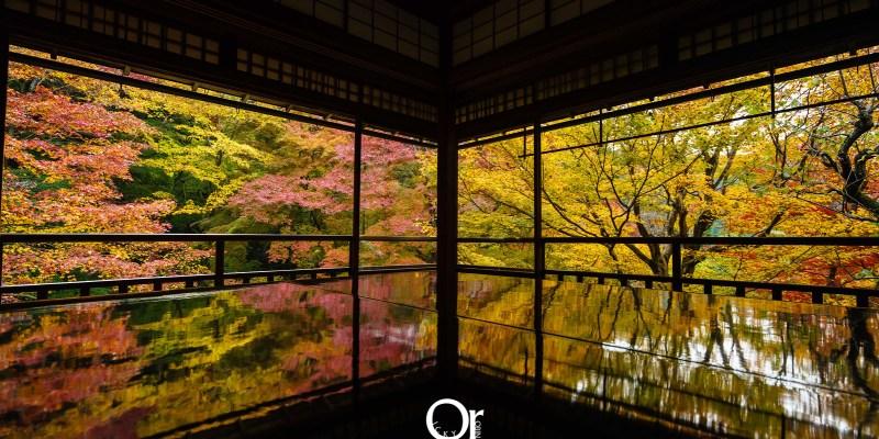 京都賞楓景點|琉璃光院,京都一年只有兩次機會能見到的美景,來到京都千萬別錯過,夏秋限定京都攝影景點