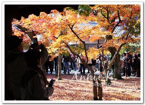 京都_東福寺2