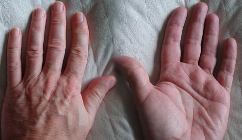 my fingers