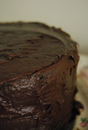 Double Chocolate Cake with Icing