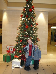 Boys Tree