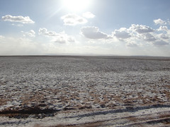 The drylands of Marsabit District, in northern...
