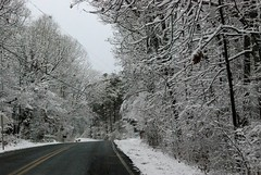 Everything's prettier in the snow! Even the drive to Starbucks!