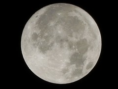 Wolf Moon ~ First 2011 Full Moon
