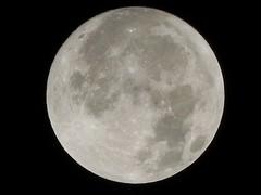 Wolf Moon ~ First 2011 Full Moon
