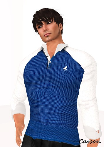 Wilson's - 3 Button Polo Navy and white collar