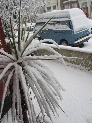 Snowy E5