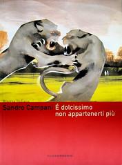 Sandro Campani, É dolcissimo non appartenerti più, Playground 2005, immagine di cop. ©2005 Onze; cop. (part.), 1