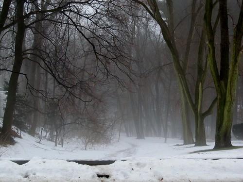 Snowmelt fog