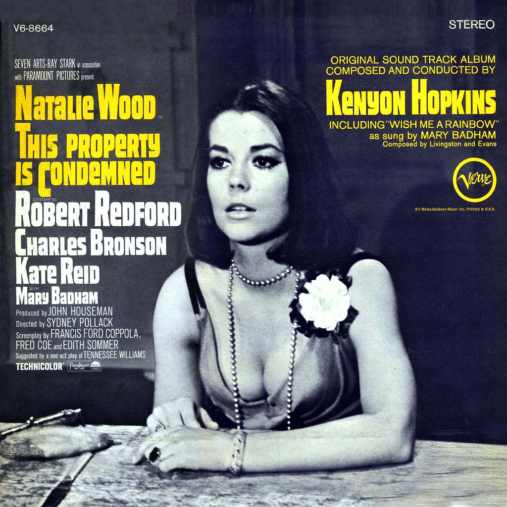 Kenyon Hopkins - This Property is Condemned