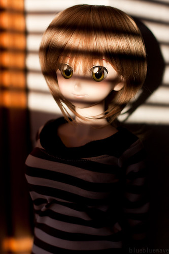 Dollfie Yoko's piercing gaze
