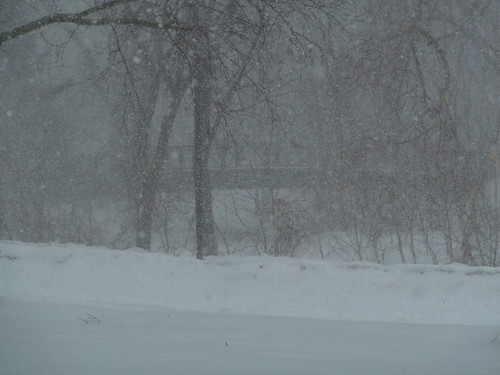 Blizzard at Minnehaha Creek