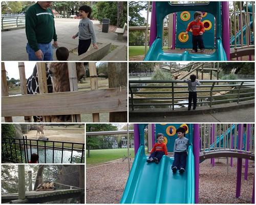 Montgomery Zoo, Montgomery AL