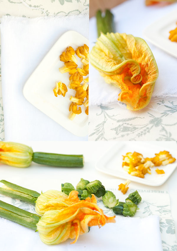 courgette blossoms_stamen