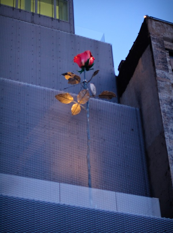 43/365 - Isa Genzken's Rose II (2007), New Museum, Bowery, Lower East Side.