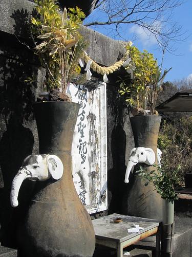 Elephant vases